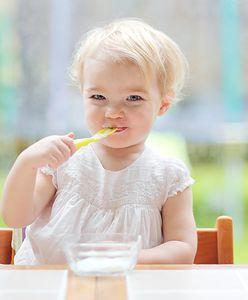 Dlaczego dziecko jest niejadkiem? Przyczyny braku apetytu u niejadka