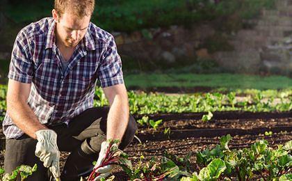 Rząd przedłużył składkę zdrowotną dla rolników