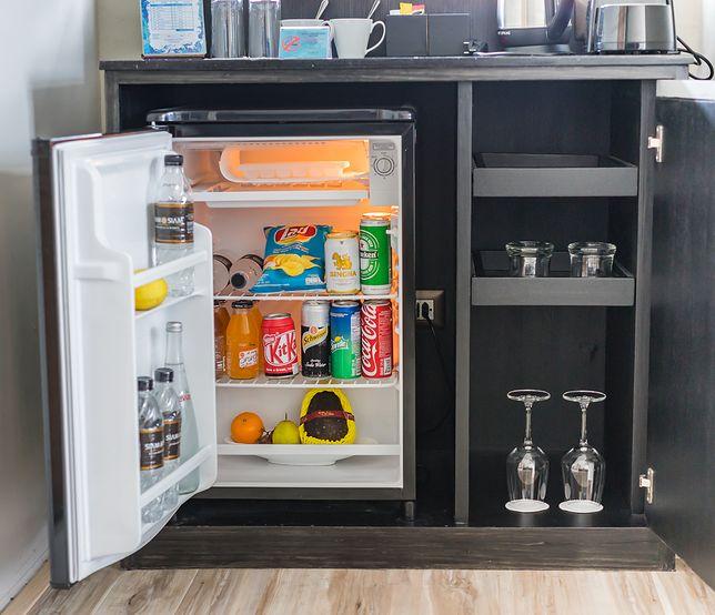 Mini lodówka do małego mieszkania. Ekonomiczne propozycje