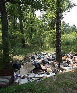 Ta ustawa miała zlikwidować widok worków śmieci w lasach. Problem trwa