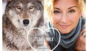 Adopcja WWF – mądry prezent na Walentynki