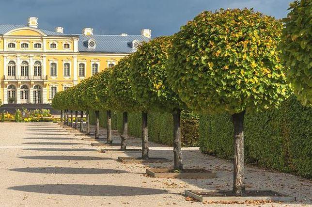 Pałac Rundale - jeden z najpiękniejszych budynków na Łotwie