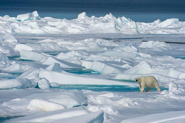 Poważne zmiany w Arktyce
