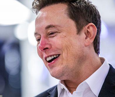 Fortnite: Kupił go Elon Musk i skasował? To prawdziwy koniec świata