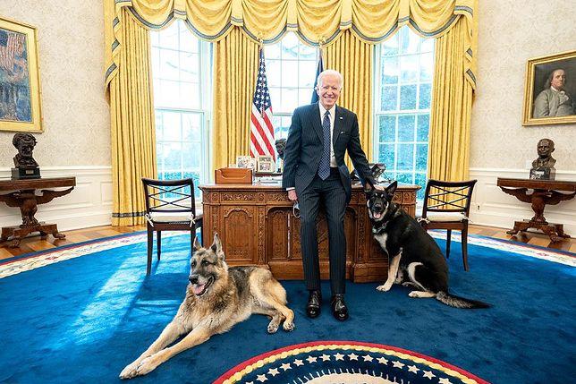 """Pies Bidena pogryzł funkcjonariusza. Behawiorysta: """"po prostu się bał"""", fot. Official White House Photo by Adam Schultz"""