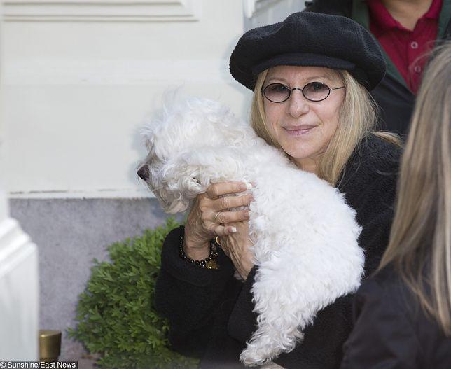 Barbra Streisand sklonowała swojego psa. Podwójnie