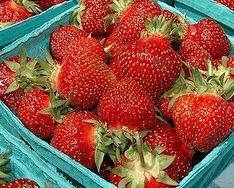 8 najlepszych letnich owoców i warzyw