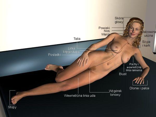 Ilustracja stref erogennych kobiety