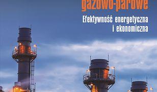 Dwupaliwowe elektrownie i elektrociepłownie gazowo-parowe. Efektywność energetyczna i ekonomiczna