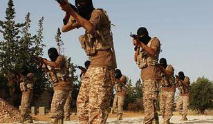 Cyberdżihad w odwrocie. Sekretny program FBI eliminuje propagandystów ISIS jednego po drugim