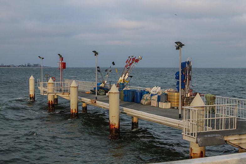 Skażone ryby z Bałtyku. Są niebezpieczne dla zdrowia
