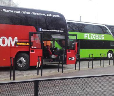Autokarem po całej Europie. Nowy przewoźnik rozbuduje siatkę połączeń międzynarodowych Polskiego Busa