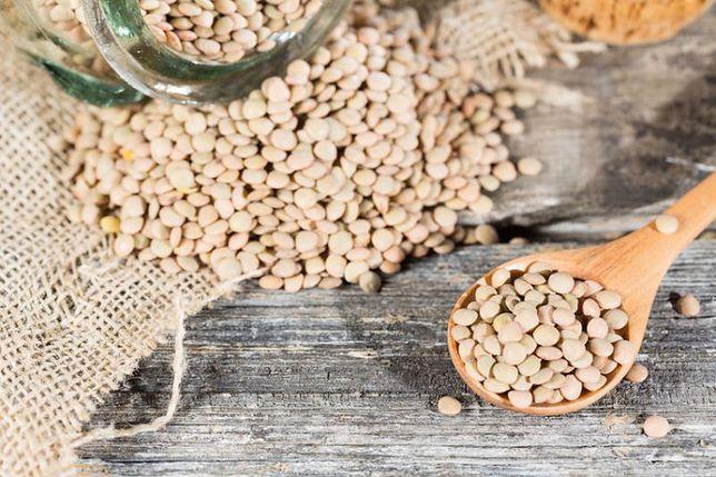 Soja coraz częściej zastępuje na naszych stołach produkty pochodzenia zwierzęcego.