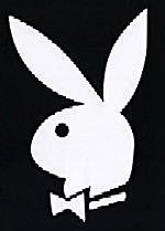 KRRiT chce cofnąć koncesję dla Playboya