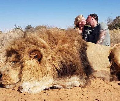 Zdjęcie z lwem wstrząsnęło ludźmi. Córka znienawidziła Kanadyjczyka