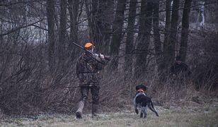 Tego dnia myśliwy nie miał pozwolenia na polowanie i kłusował