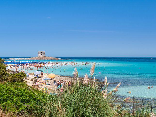 Włoska wyspa wprowadza płatny wstęp na plażę. Chcą ograniczyć liczbę turystów