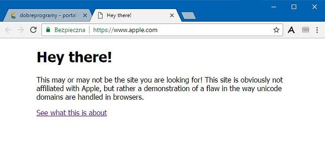 Bezpieczne połączenie z testową witryną, do złudzenia przypominającą apple.com