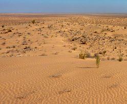 Odkrycie na Saharze. Ma więcej lat niż Ziemia