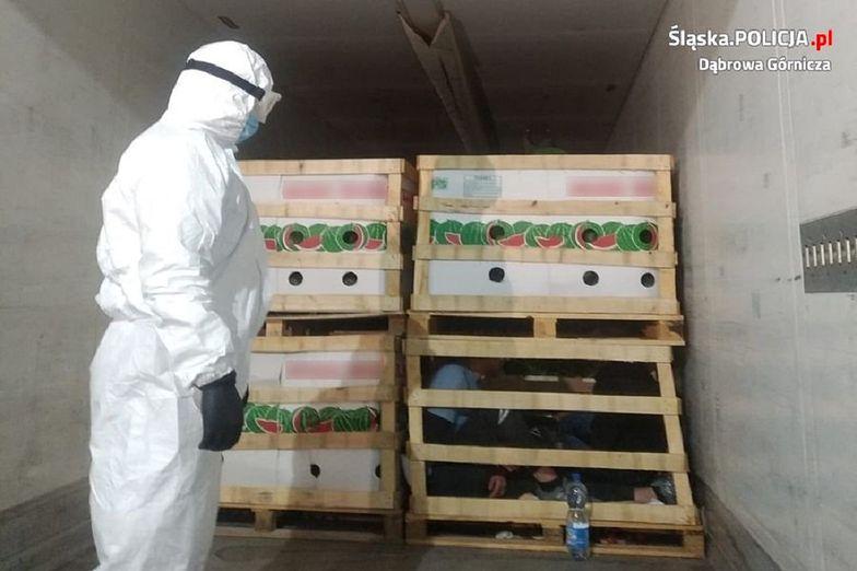 Nielegalni imigranci ukryli się w transporcie arbuzów