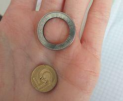 Zdjęcie 5-złotówki obiegło sieć. Burza w komentarzach