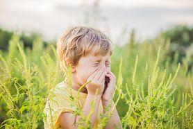Proste rady dla alergików, które ułatwiają życie
