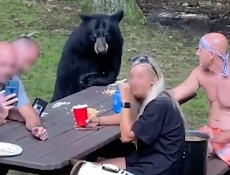 Dołączył do pikniku. Wszystko nagrano kamerą