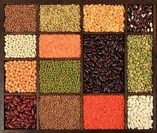 Roślinne źródła białka, które warto włączyć do diety