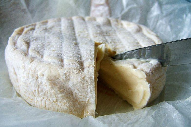 Grillowany camembert to idealny pomysł na sycącą przekąskę.