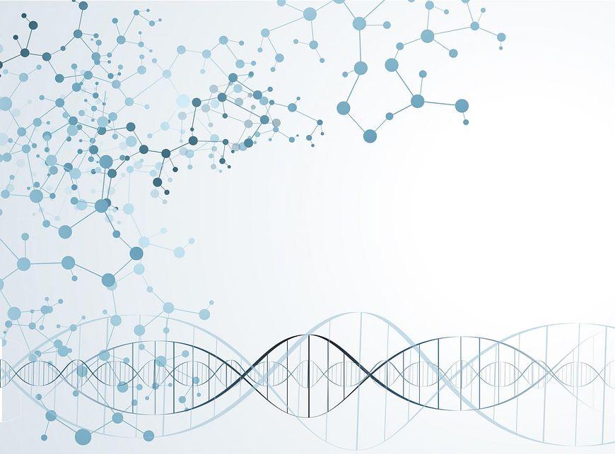 Izomery trans hamują syntezę NNKT