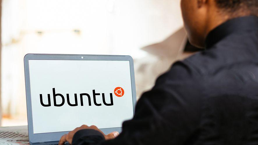 "Ubuntu 21.04 debiutuje pod kryptonimem ""Hirsute Hippo"""