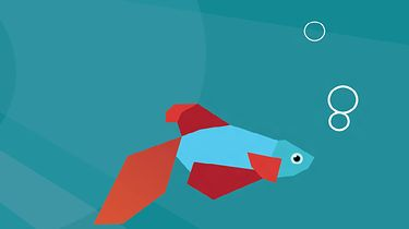 Co z tobą, kochany Microsofcie? - Windows 8 Consumer Preview - charakterystyczną cechą tej wersji była rybka :)