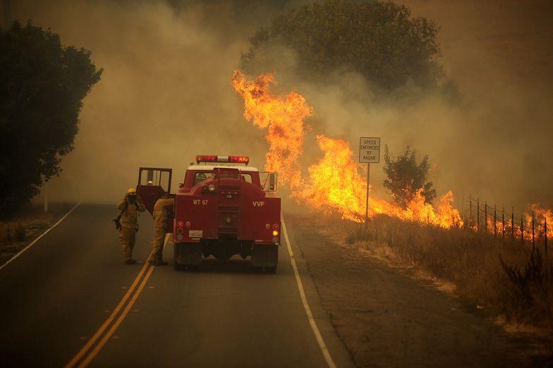 USA. Ogromne pożary w Kalifornii. Temperatury są rekordowe. Wielka ewakuacja