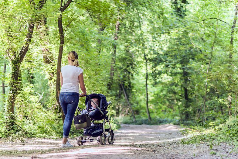 Spacerowała z dzieckiem po parku w Poznaniu, gdy to się stało. Szukają zboczeńca