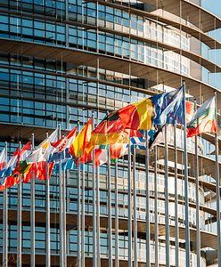 Wybory do Parlamentu Europejskiego 2019. Katowice – okręgi i listy wyborcze, kandydaci