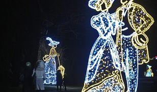 Łazienki Królewskie również oczarują świąteczną iluminacją