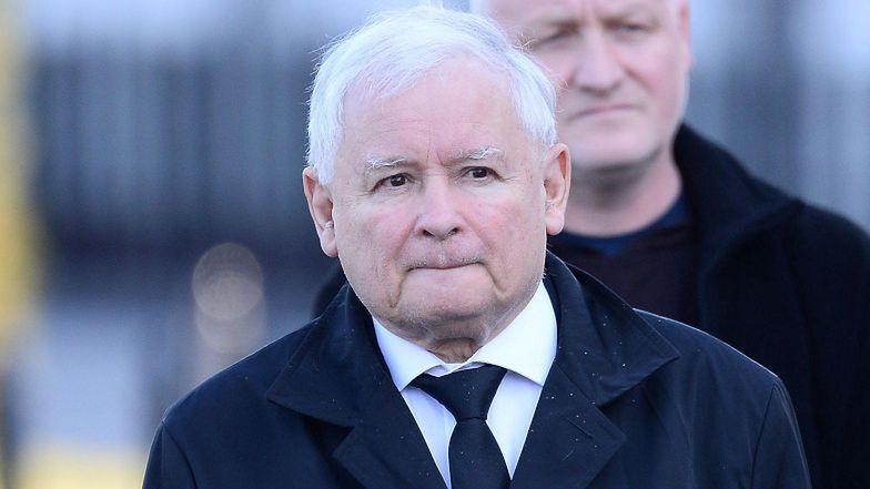 Ziołowe mikstury Jarosława Kaczyńskiego. Specjalista ma ostrzeżenie