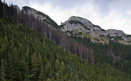Turyści w Tatrach mogą wykupić dobrowolne ubezpieczenia