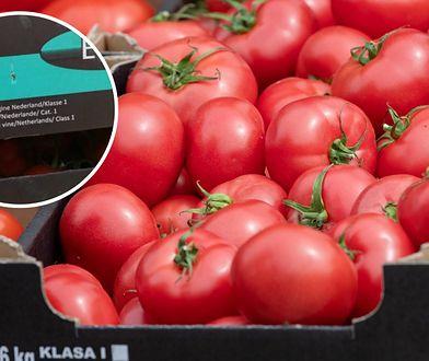"""""""Polskie"""" pomidory, ale prosto z Holandii. Sieć tłumaczy i przeprasza"""