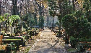 Wszystkich Świętych. Nie możesz znaleźć grobu? Skorzystaj z warszawskiej mapy cmentarzy