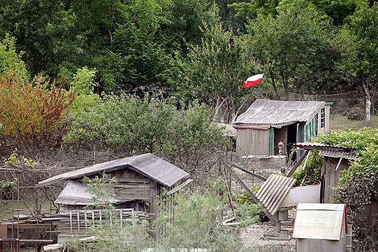 NIK: tysiąc osób nielegalnie mieszkało na działkach