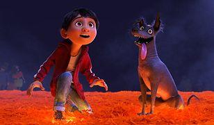 """Miguel i pies Dante w filmie """"Coco"""""""