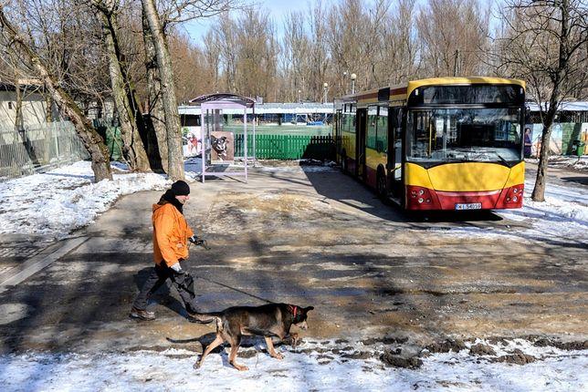 """Autobus i wiata przystankowa przed schroniskiem """"Na Paluchu"""""""