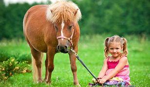 W zabawach ze zwierzętami ważne jest traktowanie ich jak czujących istot