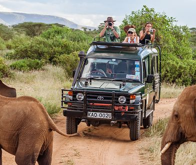 Na safari można się wybrać także z małymi dziećmi