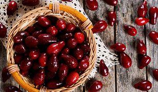 Dereń – odkrywamy zapomniany owoc