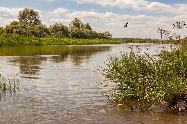 Polesie – magiczna kraina tuż za granicą