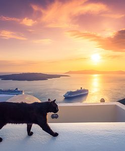 Ostatni dzwonek na Grecję. Super tanie wycieczki