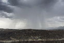 W Australii nareszcie spadł deszcz. Mieszkańcy są zachwyceni, ale pojawiło się inne zagrożenie