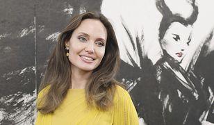 Angelina Jolie postawiła na delikatny makijaż